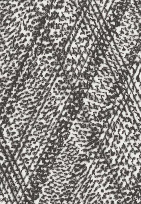 Drypoint series Italics