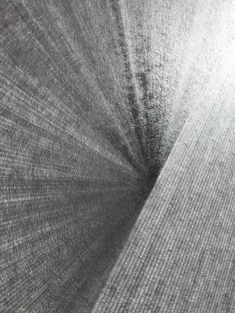 Plain Dust, Alexandra Roozen